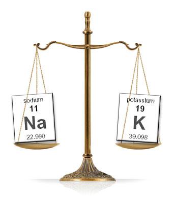 sodium-potassium-scale